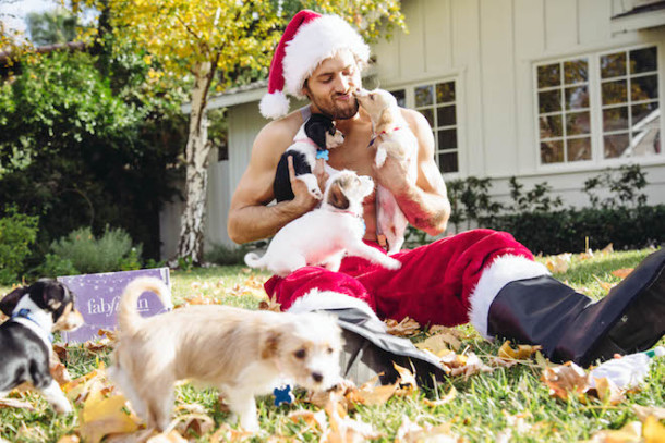 Santa Puppies 3